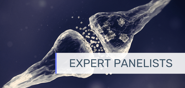 This is an image of a synapse with the text 'expert panelists' overlayed onto it.
