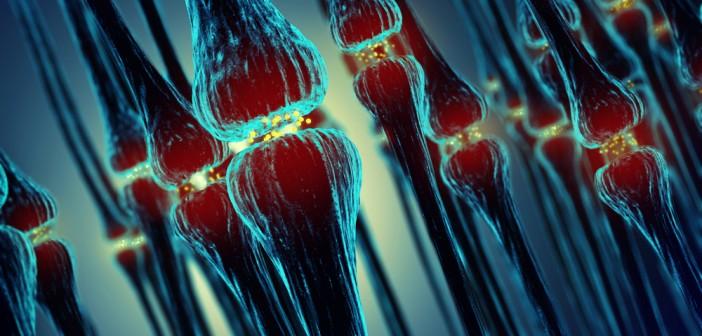 Small-molecule BDNF mimetic may improve symptoms of Rett syndrome
