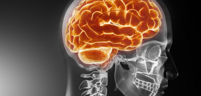 Novel inflammatory biomarkers could lead to an effective diagnostic test for TBI