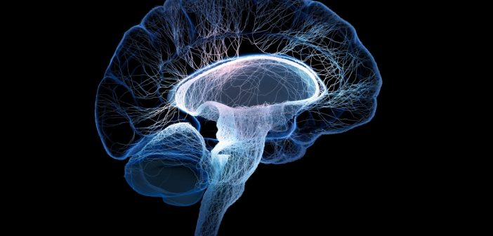 High prevalence of CTE observed in deceased American football players