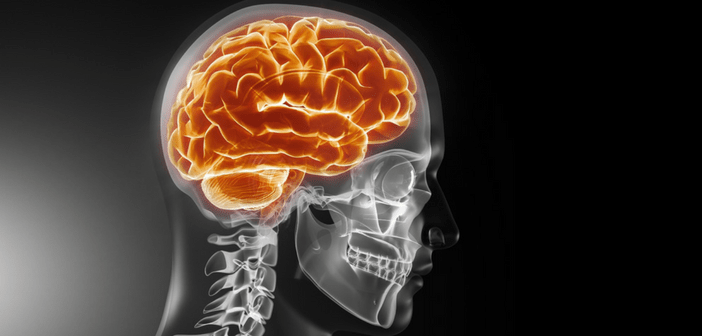 Is there a link between traumatic brain injury and dementia?