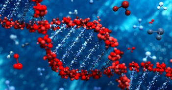 This is an image of a DNA molecule in the colours red and blue.