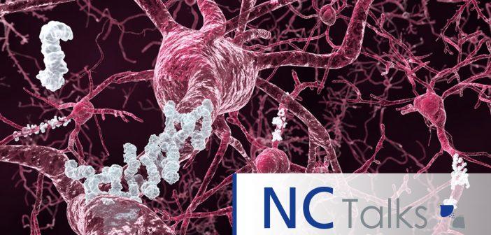 NCTalks with Tara Spires-Jones:  ApoE4, synapse degeneration and Alzheimer's