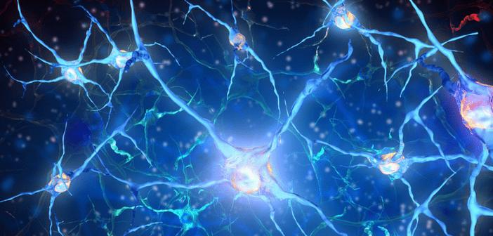 Do HIV-associated neurological disorders have shared mechanisms with Alzheimer's disease?
