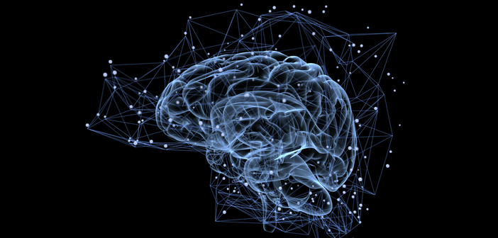 Brains for Dementia Research: how human brain tissue could improve your research