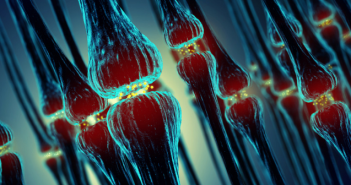 This is an image displaying multiple synapses between neurons.