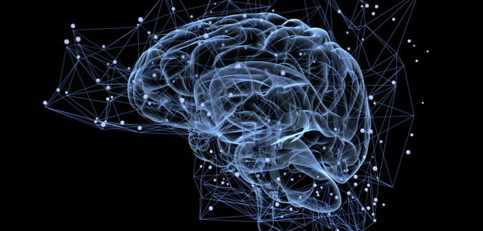 The link between auditory stimuli and fear behavior, new neural pathway identified in mice