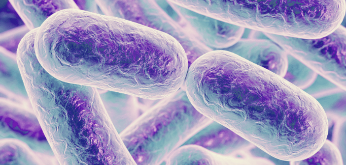 Link between Alzheimer's disease and periodontal bacteria gains traction