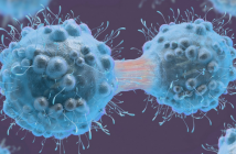 This image illustrates cancer cells connected in the colour blue.