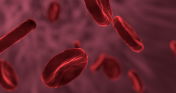 This is an image of red blood cells within a blood vessel.
