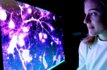 This image includes study author Marion Hogg examining an image in relation to using tRNAs as a blood biomarker for predicting seizure occurence.