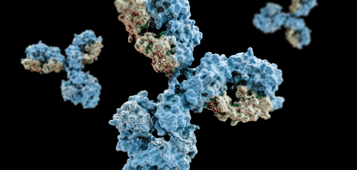 This is an image featuring antibodies and their structure.