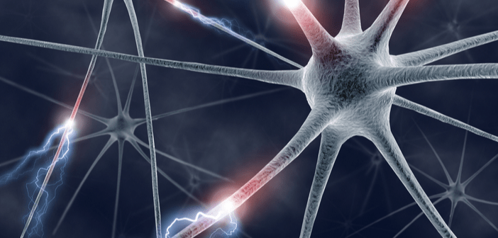 Parkinson's vs multiple system atrophy: could new technology distinguish between the two?