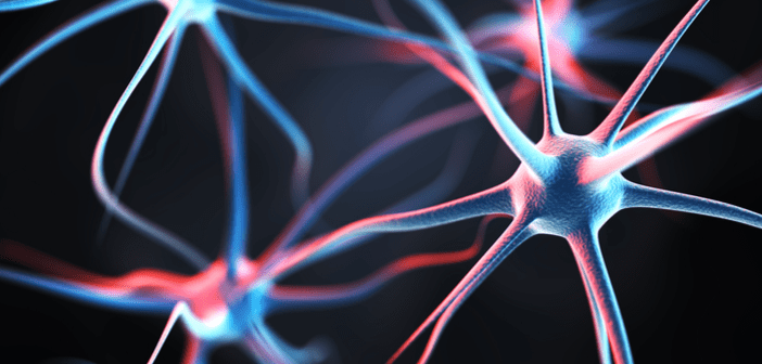 This is an image of neurons in the colour pink and blue.