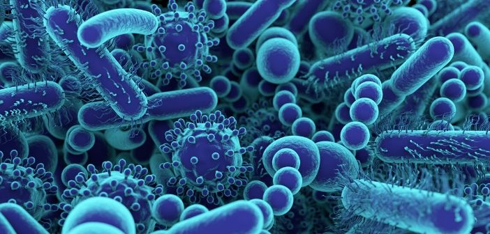 Gut microbiome modulation: potential mechanism uncovered for the treatment of multiple sclerosis
