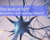 The best of 2019: an A–Z of neuroscience and neurological disease research