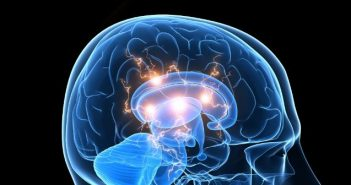 Ultrasound therapy successful in directly treating glioblastoma tumors in mice