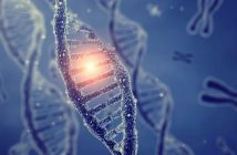 Pacifying pain: mouse study reveals a gene-therapy approach could be used to relieve chronic pain