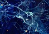 Neuromodulation and pain management