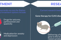 This is a snippet of an infographic featured on Neuro Central on Batten disease, which has been created for Rare Disease Day.